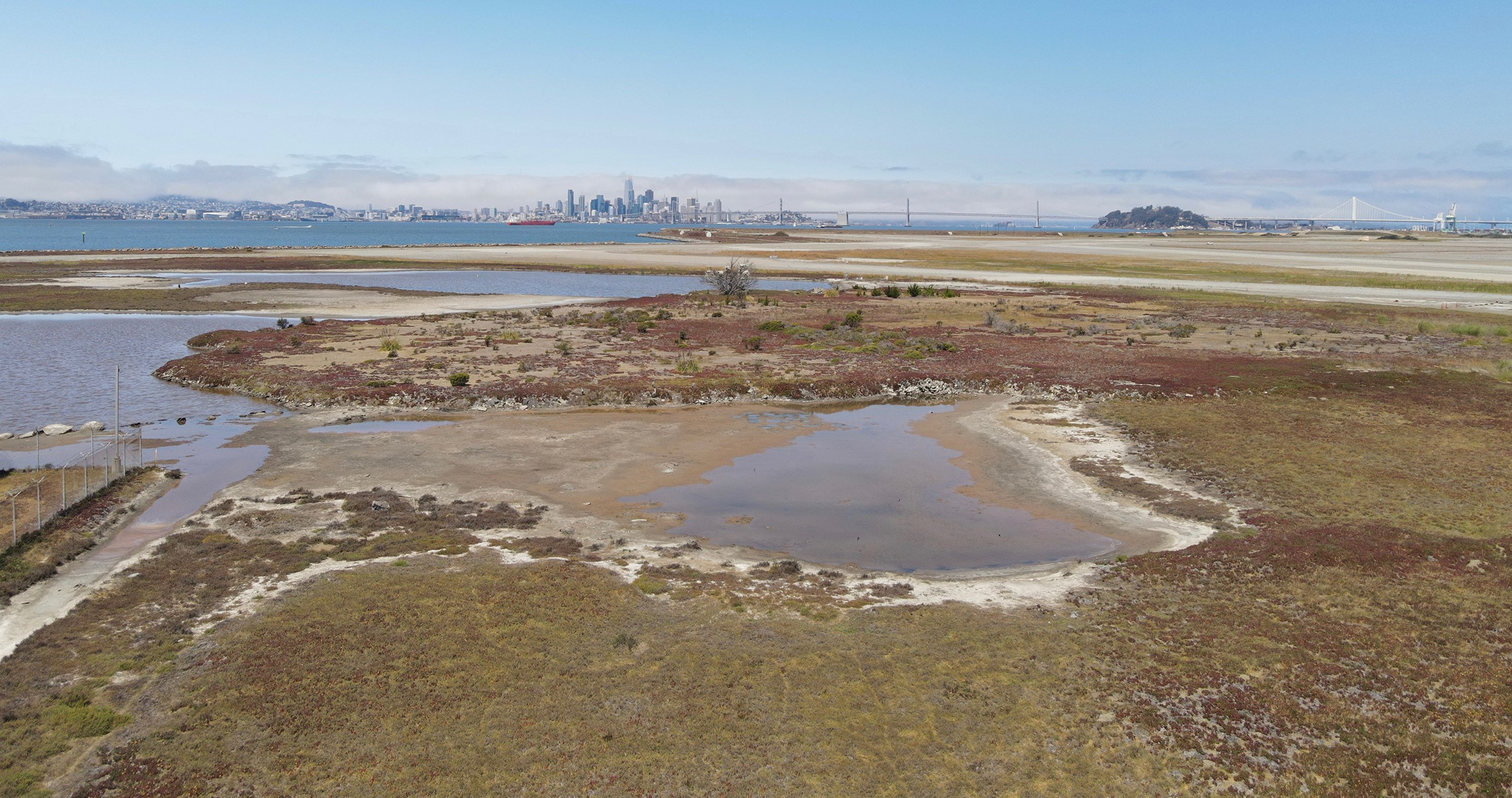 Richard Bangert &nbsp&nbsp These wetlands at Alameda Point will be restored and enhanced under a new service contract.