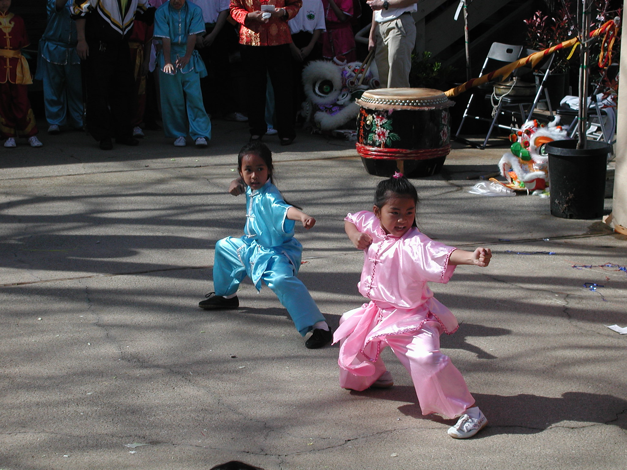 Martial arts demonstratrions are just part of the fun at the annual Spring Festival at the Harbor Bay Landing. File photo