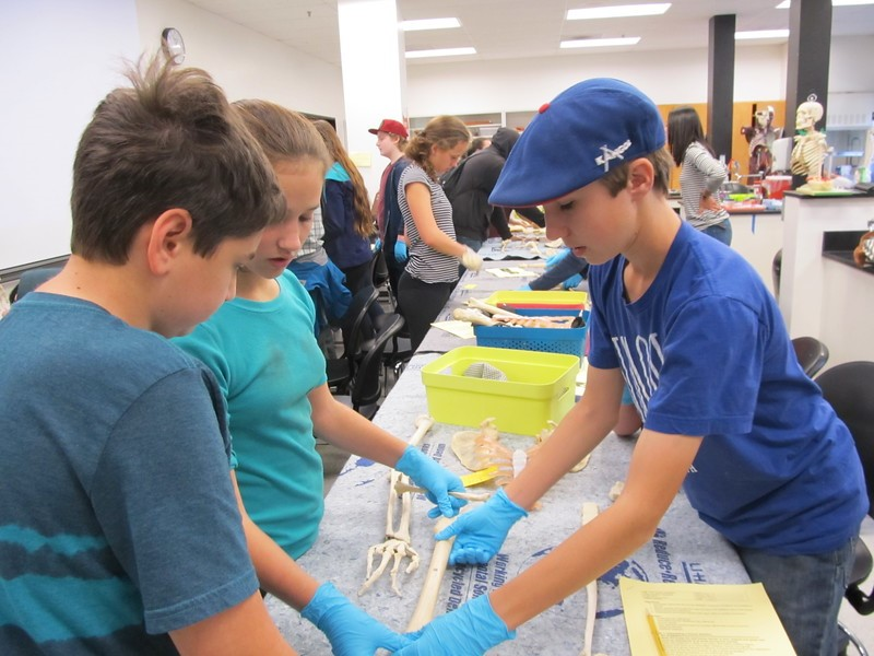Courtesy photo  Leslie Reiman led students in a hands-on activity teaching about anatomy through bone strength and flexibility testing.