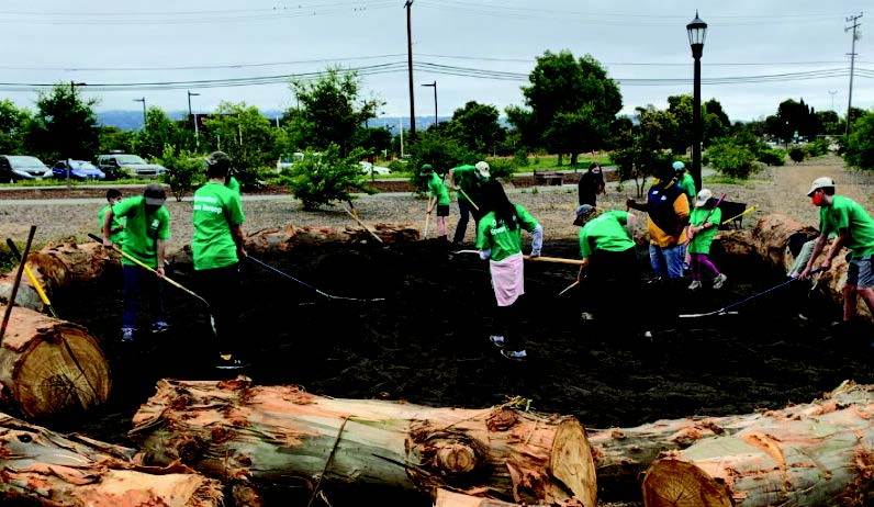Alameda youth spread dirt around the Monarch Butterfly habitat as part of the volunteer park beautification program, Operation Green Sweep, this summer.