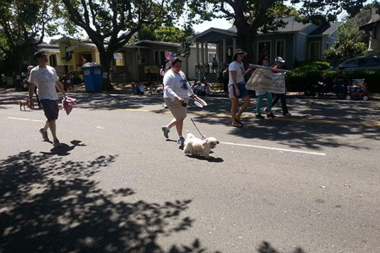 File photo - While most dogs enjoy marching in the July Fourth Parade, fireworks shows later in the day may cause extensive trauma or stress for certain dogs and other pets. Follow the helpful tips in this story to prevent any undue discomfort to beloved four-legged family members.