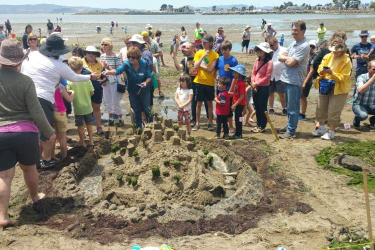 Courtesy ARPD  The best in show sand castle by Team Awesomeness featured a moat and greenery.