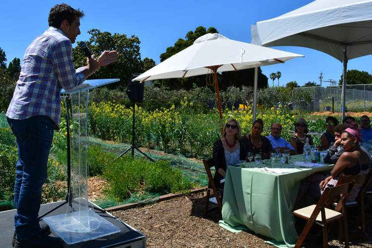 Richard Bangert  Keynote speaker Matthew Dolan, executive chef at Twenty Five Lusk in San Francisco, spoke at the Urban Farm Table fundraiser for the Alameda Point Collaborative (APC). Guests took their seats between crop rows at APC's farm located not far from the Main Street Ferry Terminal.