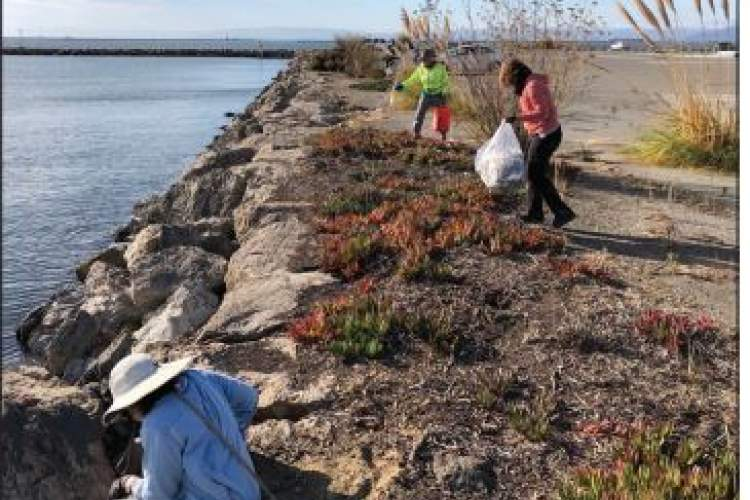 Volunteers picking up trash along the western shoreline  of the Seaplane Lagoon, Sunday, Oct. 17, 2021