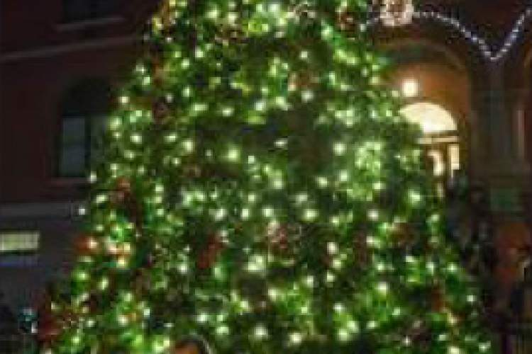 File Photo  the mayor's  holiday tree is truly a sight to behold each year. Amazingly you'll find that magical elf Kris Kringle both at City Hall and at Christmas Tree Lane