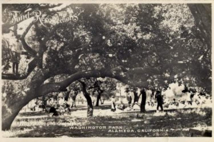 Courtesy photo &nbsp&nbsp The West End's Washington Park as it appeared about 100 years ago. Postcard appears courtesy of alamedainfo.com.