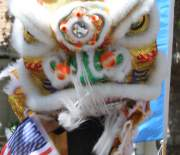 Chinese Dragon Dancer