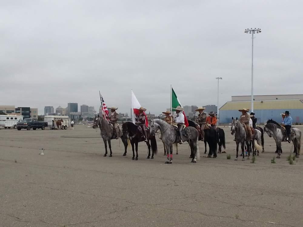 Equestrian entries judged prior to the parade on Encinal Terminals behind the Del Monte building.