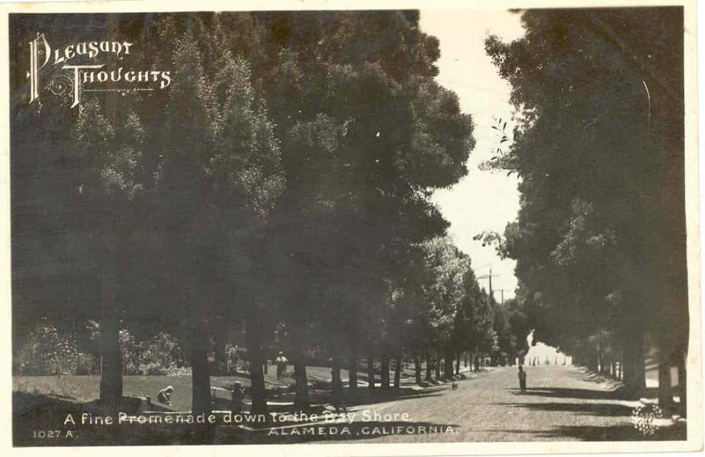 Alameda's idyllic setting was the perfect escape for city dwellers.
