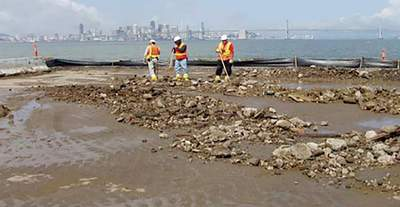 Navy's Cleanup Drawing Scrutiny | Alameda Sun