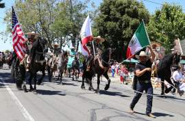 Kevin Francis Barrett  Rancho el Afortunado and its magnificent performing horses (and bulls) took the Mayor's Trophy for 2016. The trophy is the top honor the Parade Committee bestows. See more photos on page 12 and at alamedasun.com.