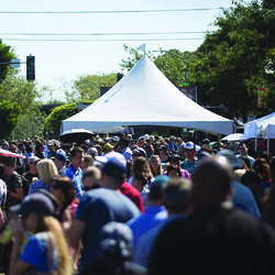 Courtesy photo &nbsp&nbsp The Blues Brews and BBQ festival last weekend brought a huge crowd to Webster Street for the perfect blend of food, drink and music.