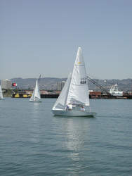 File photo &nbsp&nbsp The Sea Scouts are the seafaring version of the Boy and Girl Scouts. Their program is a good way to begin learning the skills necessary to pilot a sailboat.