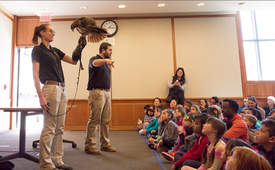 Photos courtesy Alameda Library &nbsp&nbsp Joe-Joe and Kelsey from Conservation Ambassadors showcased wild animals of North America, including this hawk.